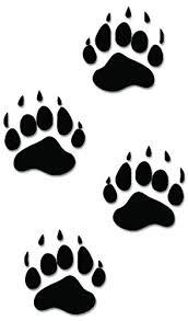 Black Bear Paws Print Tracks Hunting Vin Buy Online In China At Desertcart