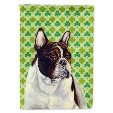 french bulldog st patrick s day