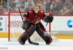 Adin Hill | Hockey Prospects – DobberProspects