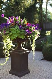 beautiful container garden idea with