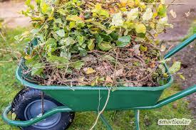 Verwilderten Garten neu gestalten: So einfach geht's mit der ...