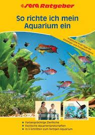 26+ Stein Gestalten Malawi Aquarium Steinaufbauten Gif