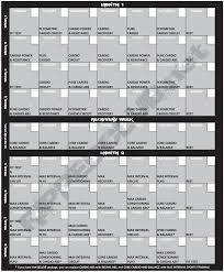 insanity workout schedule free pdf