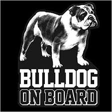 Amazon Com Bulldog Clear Vinyl Decal Sticker For Window English Bull Dog Sign Art Print Arts Crafts Sewing