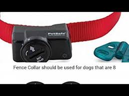 Petsafe Wireless Fence Collar Waterproof Receiver 5 Adjustable Levels Of Correction Youtube