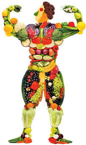 organic vegetable garden fertilizers