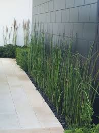 Indoor Plants Provide Lots Of Advantages Not Just For Houses However Likewise For Workplaces And Ot Paint Concrete Patio Painting Concrete Concrete Block Walls