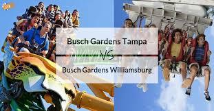 busch gardens ta vs busch gardens