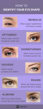 basic eye makeup steps every must