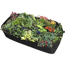 vegetable plant containers com