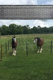 Pro Tek 1 5 Electric Tape Horse Fence In 2020 Horse Fencing Horses Horse Love