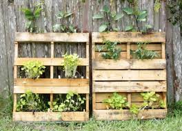 vertical gardens for tiny spaces