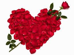 صور قلوب من الورد
