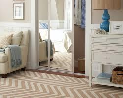 elegant style with mirror closet door