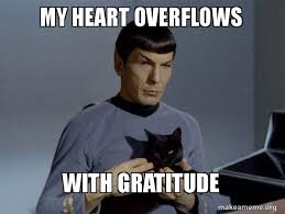 my heart overflows with gratitude - Spock and Cat Meme | Make a Meme