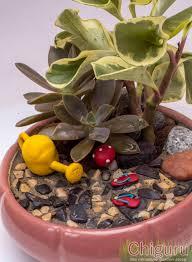 art of creating miniature gardens at jp