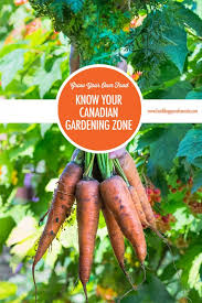 grow your own food knowing your