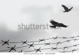 Barbed Wire Fencing Fence Made Wire Stock Vector Royalty Free 1067964806