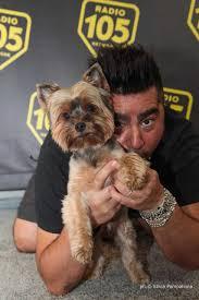 Il 22 Giugno 2018 Giornata Mondiale del Cane in Ufficio - Radiobau