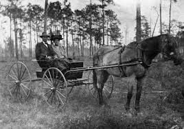 Florida Memory • Lonnie John Clark and wife Priscilla Wells Clark in buggy  - Greensboro, Florida