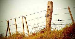 How To Build A Fence A Guide To Erecting A Post And Wire Fence