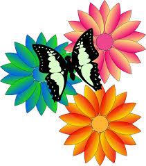 summer flower transpa png clipart