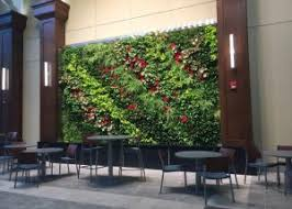 living wall design and installation