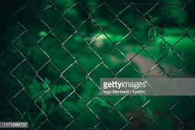 147 Green Chain Link Fence Photos And Premium High Res Pictures Getty Images