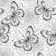 Bella Modelo Inconsutil Blanco Y Negro Con Flores Y Mariposas