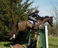 own diy cross country jumps