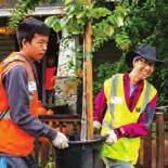 PLANTINGS EDUCATION TREE CARE EVENTS CANOPY IMPACT REPORT. Healthy Trees,  Healthy Communities - PDF Free Download