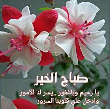 زهور وورود صباح الخير