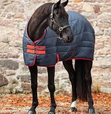 Horseware Mio Stable Rug Medium 150g - Tally Ho Farm Ltd