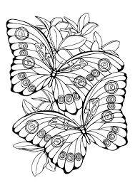 Vlinders Kleurplaten Dieren Kleurplaten Adult Coloring Pages