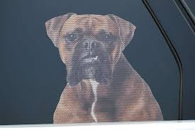 Amazon Com Realistic See Through Life Size Weatherproof Exterior Dog Decal For Car Truck Home Or Business Window Boxer Automotive