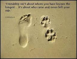 all about us seven faraway friends quotes about friendship a