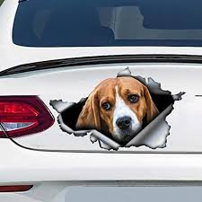 Amazon Com Beagle Car Decal Beagle Sticker Vinyl Sticker For Cars Windows Walls Fridge Toilet And More 11 Inch Home Kitchen