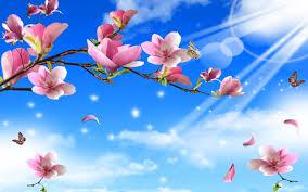 funmozar spring flowers and erflies