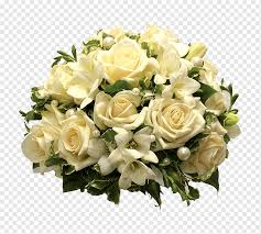 bouquet of white roses birthday