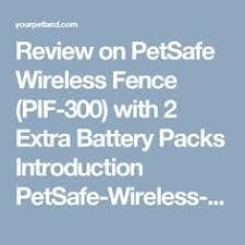 10 Hinh ảnh đẹp Nhất Về Wireless Dog Fence