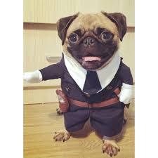 ازياء مضحكة للكلاب ملابس شرطية رائعة تناسب الكلب ملابس الجرو معطف