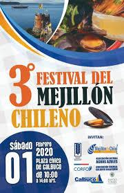 Diario Digital El Calbucano Pagina 25