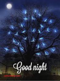 goodnight posted by mice sellers