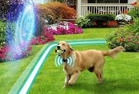 30 Best Electric Wireless Dog Fences Underground Invisible Dog Fence Dog Fence Pet Fence Wireless Dog Fence