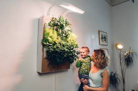 vertical hydroponic wall garden