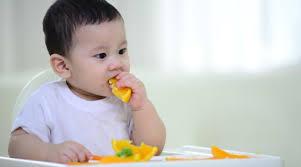 33+ thực đơn ăn dặm BLW cho bé 9 tháng tuổi giàu dinh dưỡng