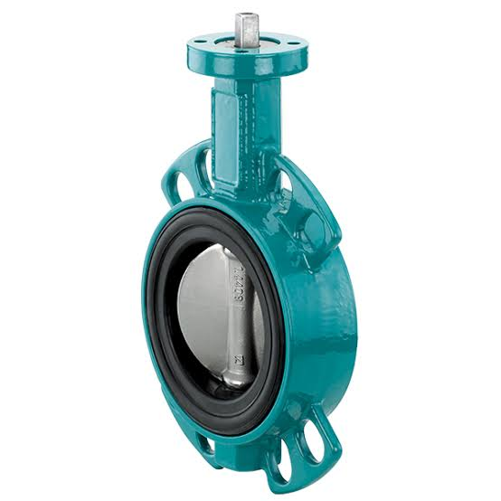 Image result for butterfly Valve""