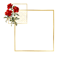 Red Rose Frame 2289 2289 Transprent Png Free Download Picture