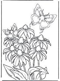 Bloem En Vlinders Kleurplaten Bloemen