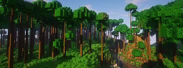 Dynamic Trees Mods Minecraft Curseforge